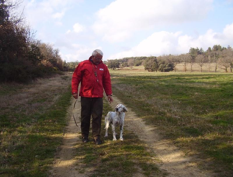 Photo - pension canine-Elevage des pics luchonnais