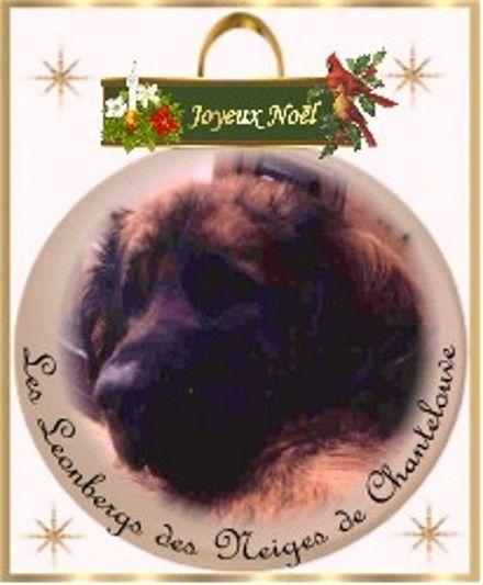 Des Neiges de Chantelouve - Joyeux Noël à tous