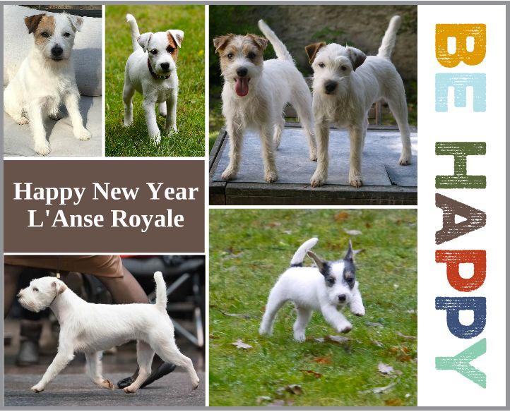 de l'Anse Royale - Happy New Year 2018