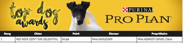 de l'Anse Royale - Della Best Parson Russell Terrier 2017