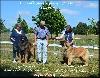- Régionale d'Elevage à Séreilhac (87) 21 août 2016