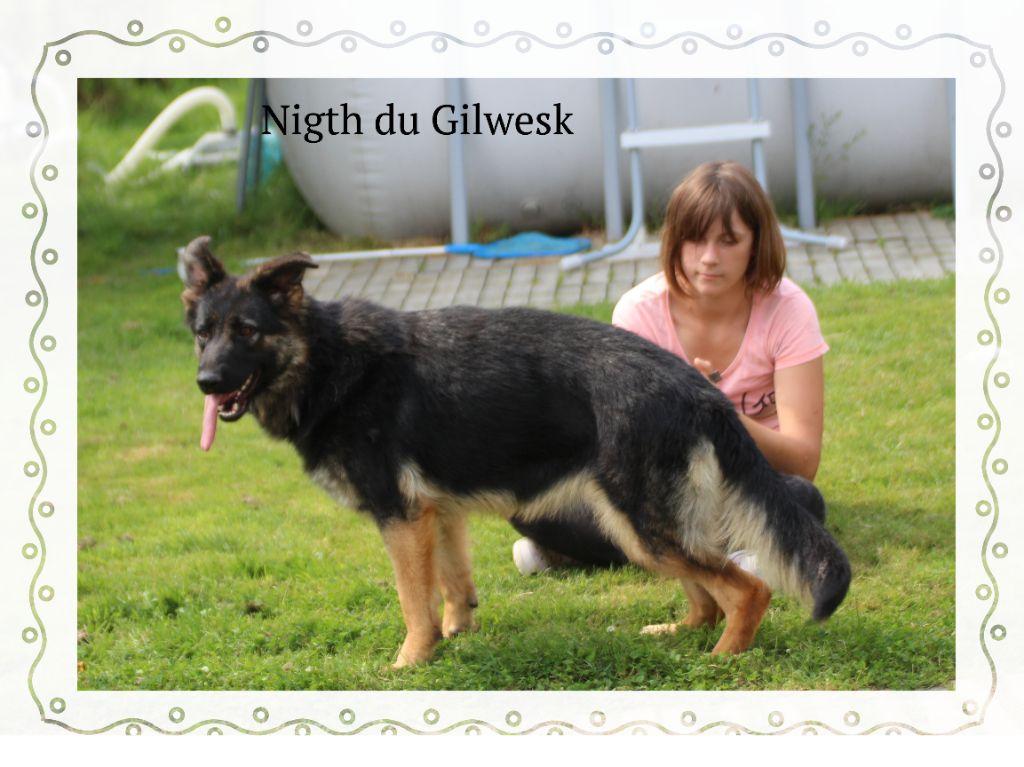 Publication : du Gilwesk