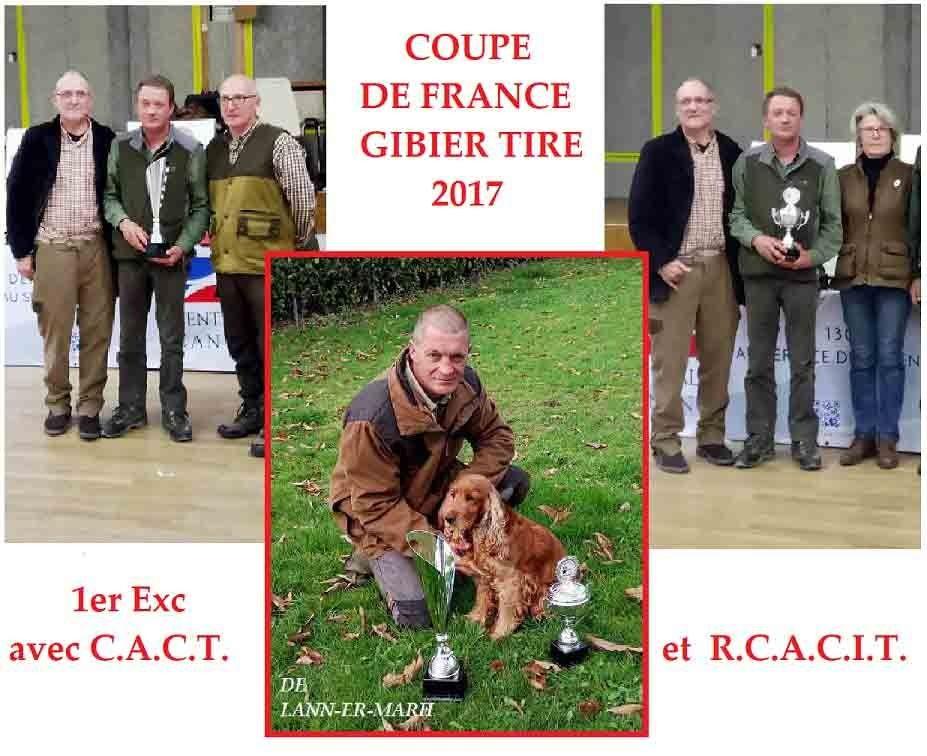 de Lann-er-Marh - Field Trial : la Coupe de FRANCE