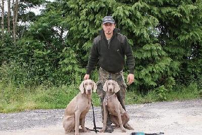 el Bosque de Lugh - Bretoña 13 & 14 June , cours pour dresser des chiens