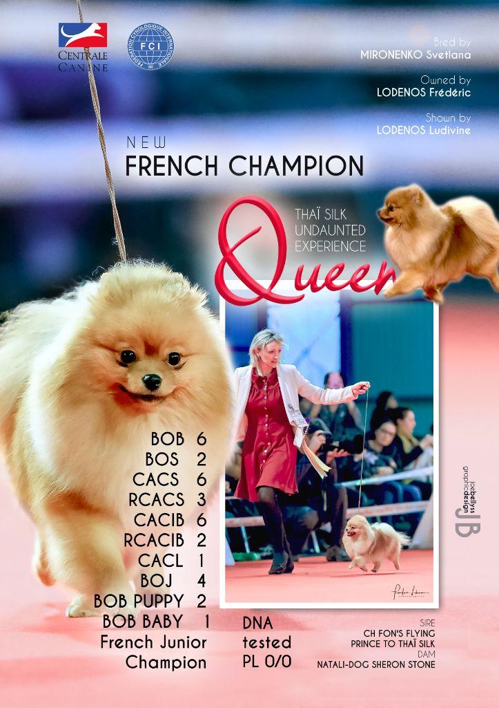 du Diamant d'Or - Queen Championne de France 2018