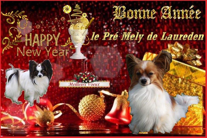 du Pre Mely de Laureden - Bonne et heureuse année 2019