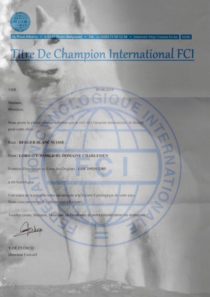 du Loup de la Vieille Eglise - Champion international de la FCI