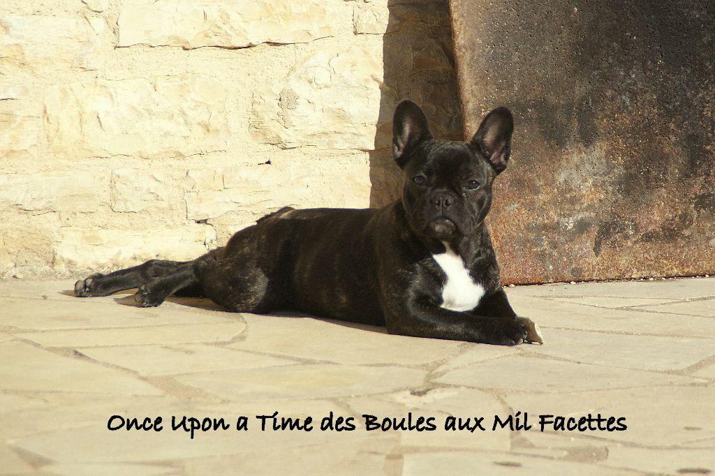 Once upon a time des boules aux mil facettes
