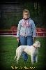 - obtention de l'attestation d'élevage